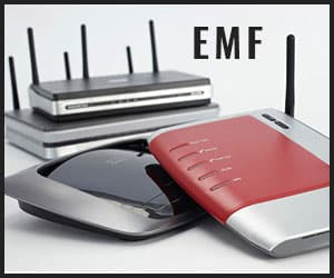 EMF from wi-fi router
