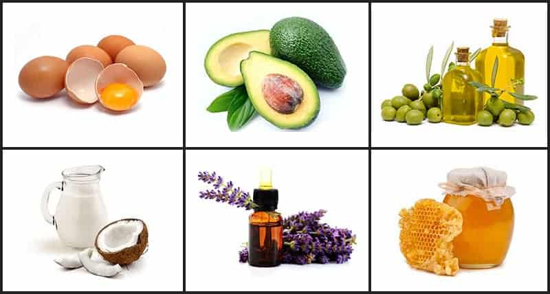 Natural nourishing ingredients of damaged curly hair